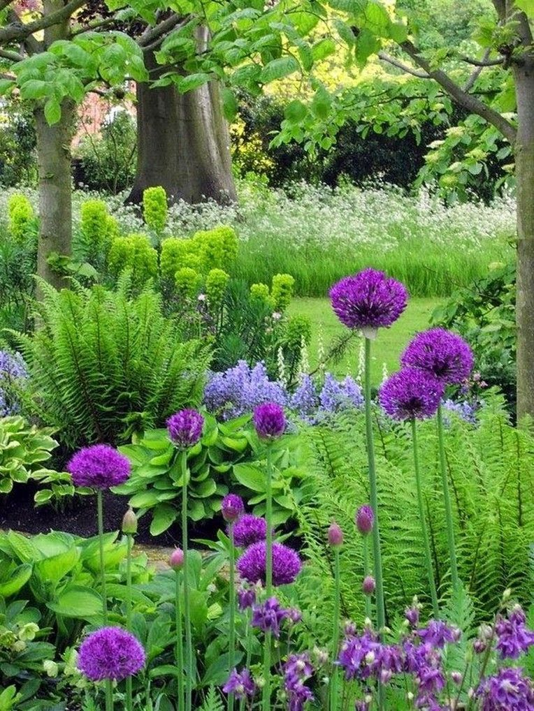 Pin on Garten in 2020 | Garden ideas under trees, Shade ...