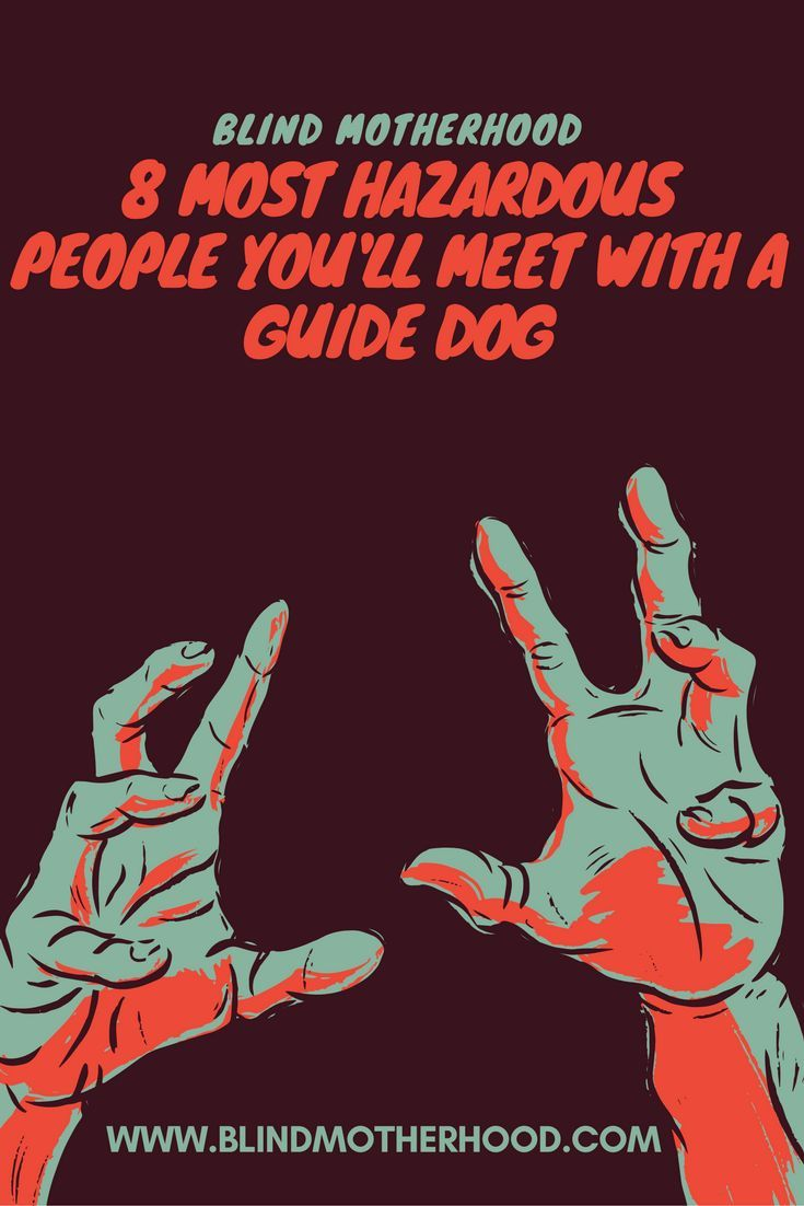 8 Most Hazardous Kinds Of People You Ll Encounter With A Guide