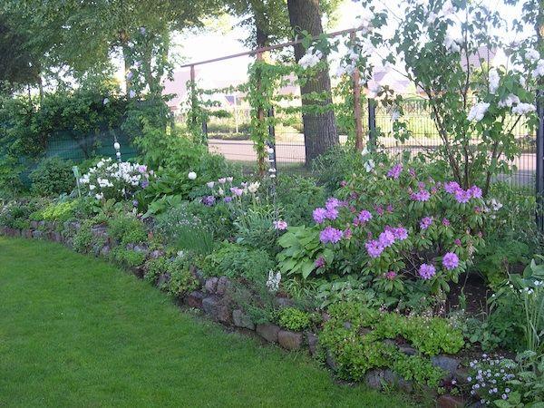 GroB Gartenlegasthenikerin Benötigt Hilfe   Seite 3   Mein Schöner Garten Forum