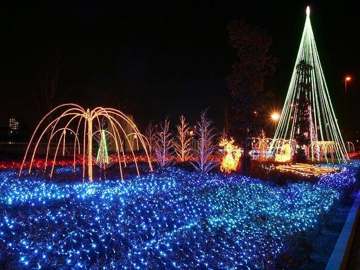 You Ll Love The Dreamy Ride Through The Largest Drive Thru Light Show In Tennessee Best Christmas Lights Best Christmas Light Displays Christmas Light Displays