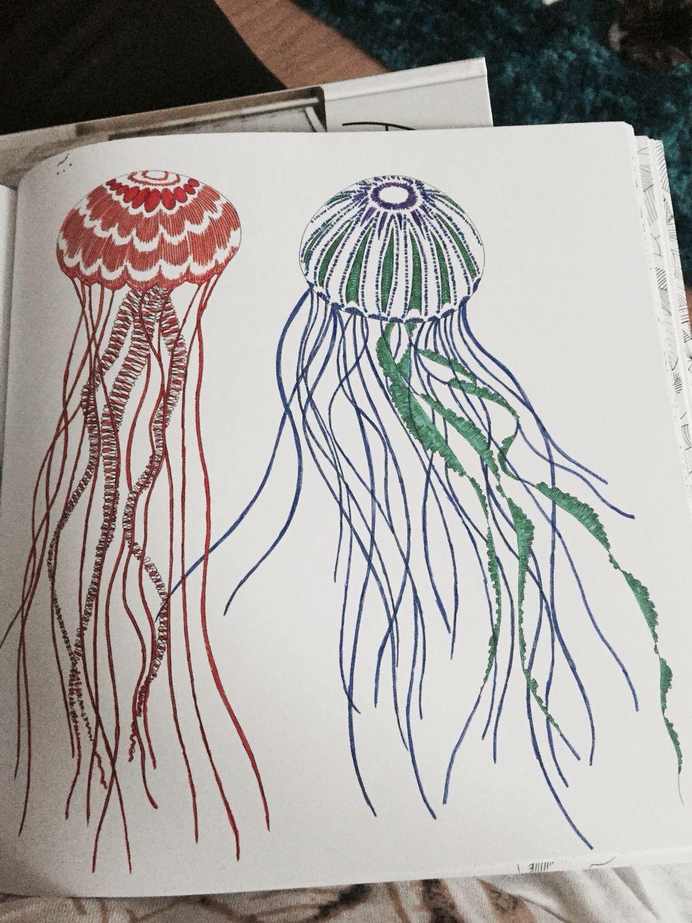 Jellyfish from Millie Marotta's Animal Kingdom