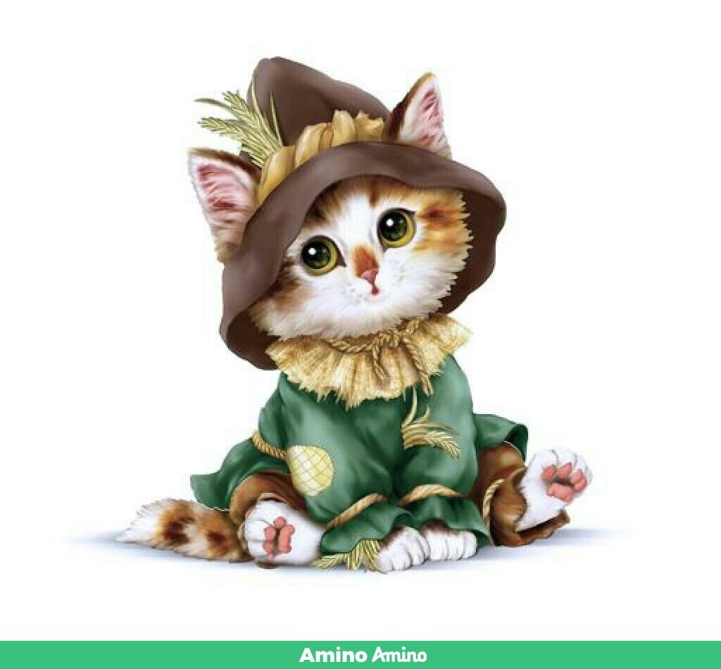 Pin by monchy alexander on amino imagenes pinterest wallpaper backgrounds animal wallpaper wallpapers amino smartphone cartoon cat art funny animals lighter sciox Gallery
