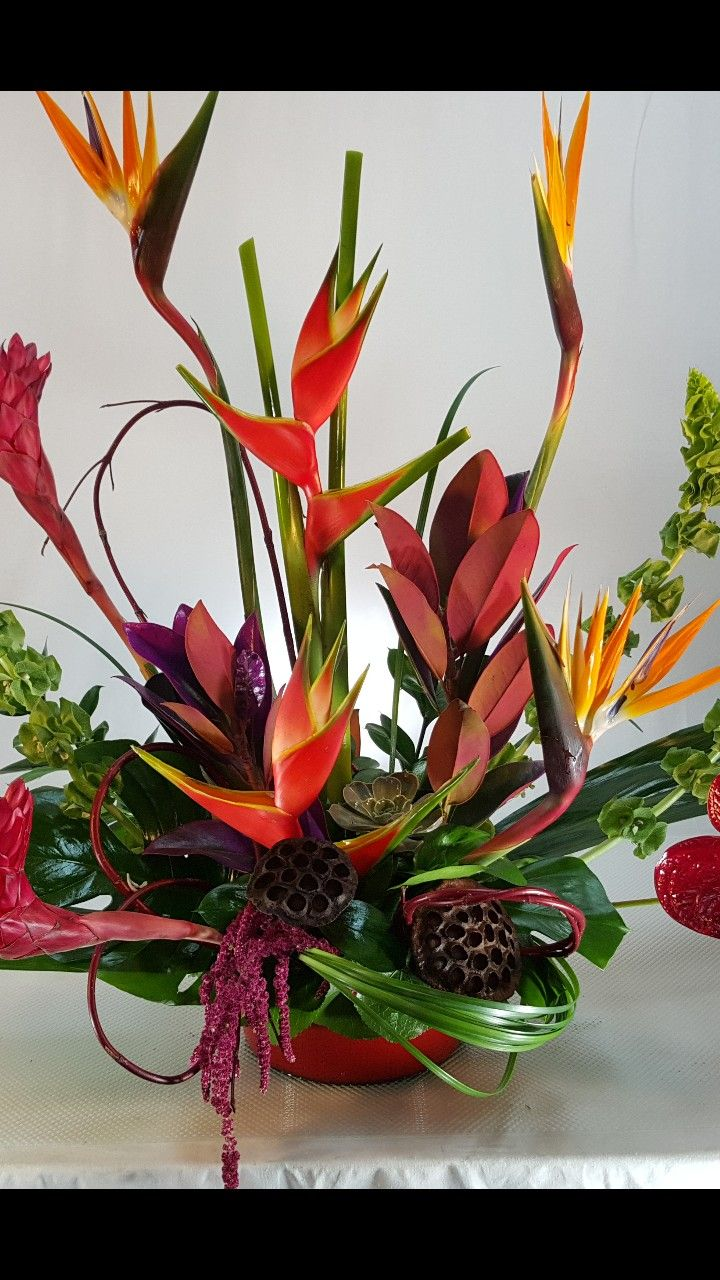 Pin By Ella B On Mayfield Florist Tucson Az Pinterest Tucson