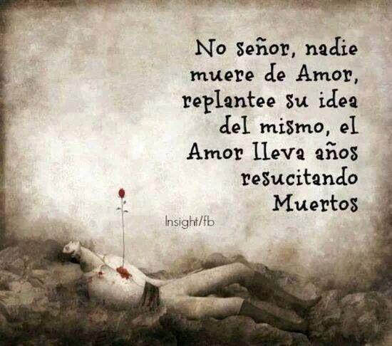No Señor Nadie Muere De Amor Love Phrases Cool Words Words