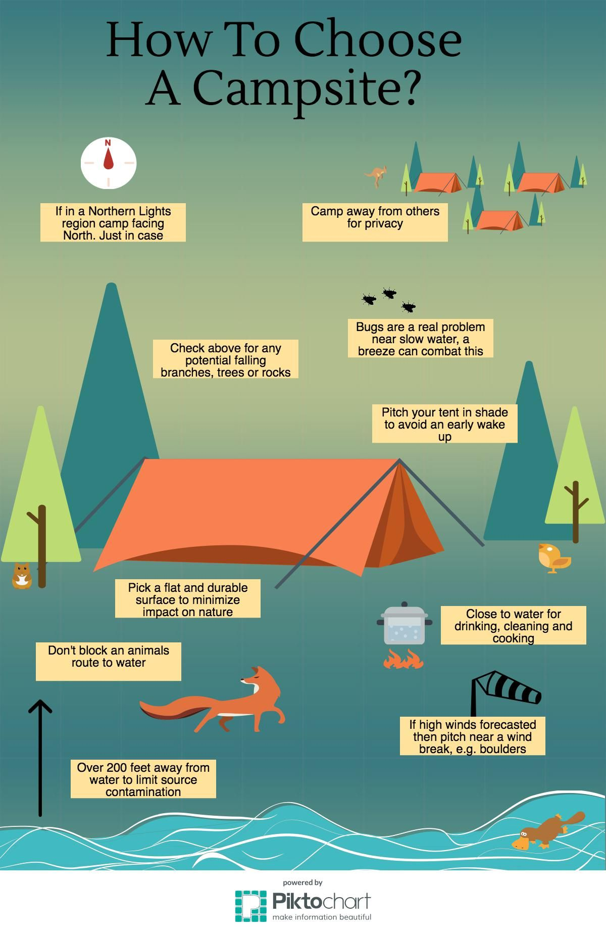 Photo of How to choose a camping site