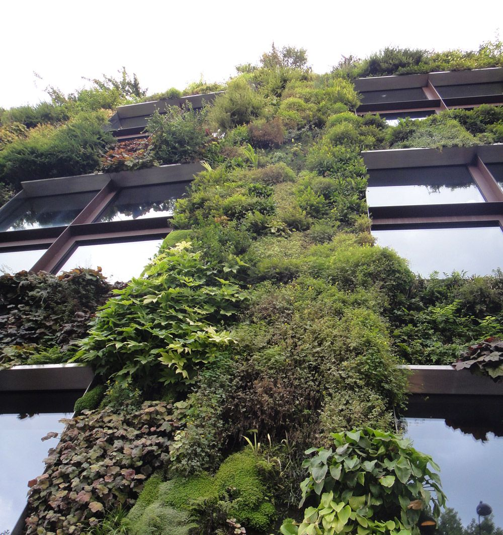 Jardins Verticais. Veja mais: http://www.casadevalentina.com.br/blog/materia/jardins-verticais-por-juliana-freitas.html #decor #decoracao #interior #design #detalhes #details #green #verde #garden #jardim #ideia #idea #casadevalentina