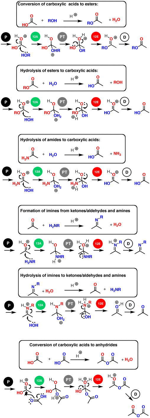 Carbonyl Chemistry: Learn Six Mechanisms For the Price Of