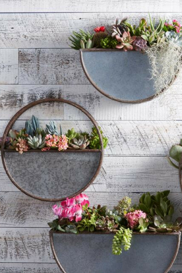 These Rounded Half Circle Shape Wall Planter Gives Plants A Lofty