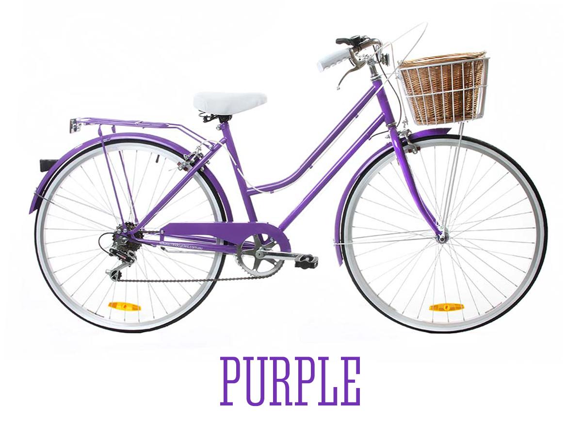Buy Reid Vintage Ladies Bicycle 6 Speed Lifetime Warranty