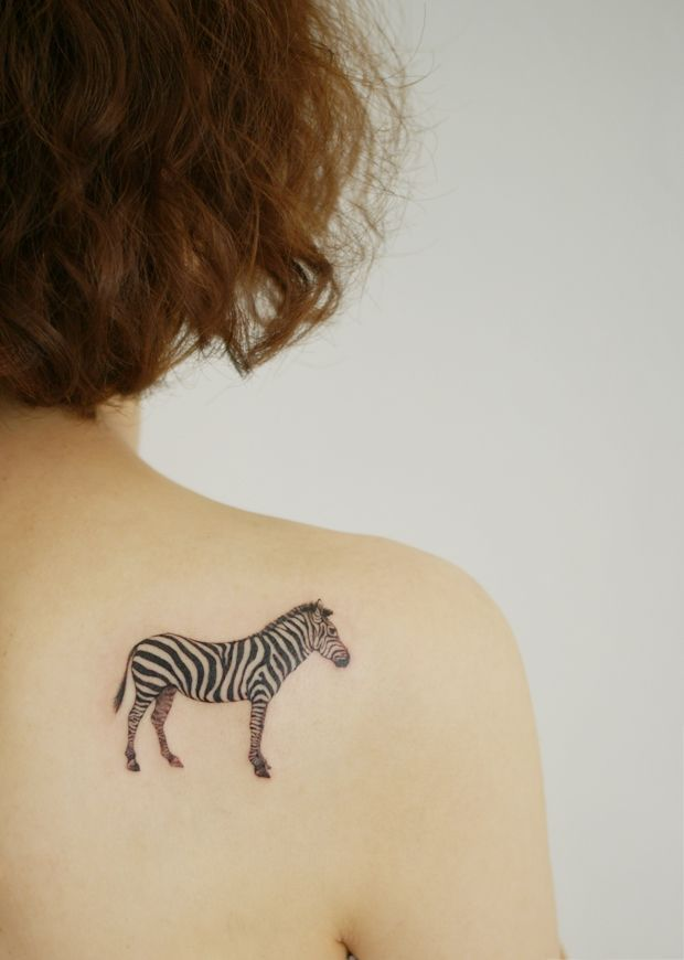 Zebra Tattoo But In Rainbow Zebra Crossing Pinterest Zebra