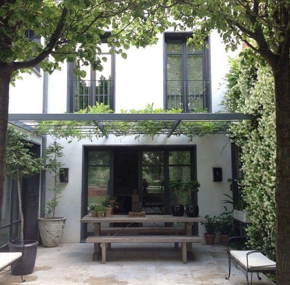 gro e t pfe mit hohen pflanzen und kleine schwarze. Black Bedroom Furniture Sets. Home Design Ideas