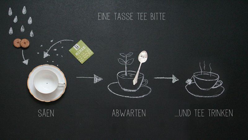 Sämereien & Zwiebeln - Eine Tasse Tee bitte! - ein Designerstück von Parzelle43 bei DaWanda