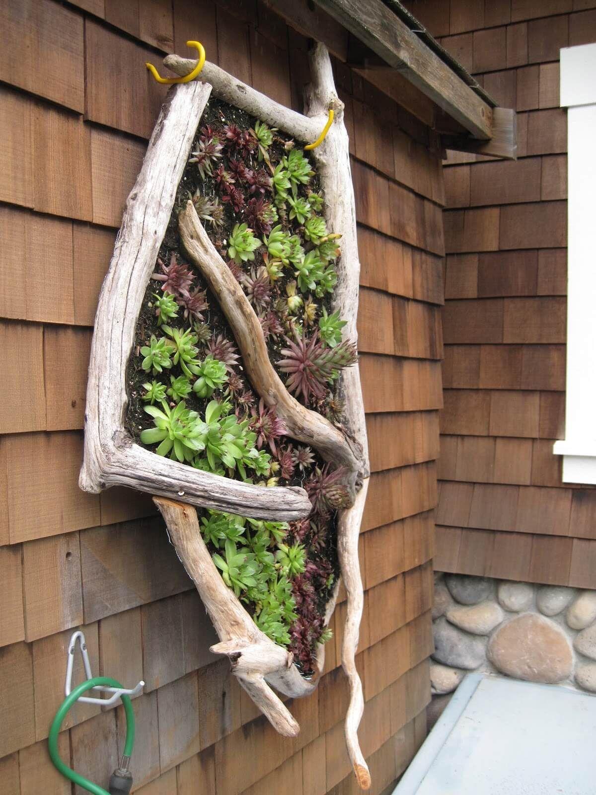 61+ Stunning Vertical Garden Ideas That Will Brighten Up Your Yard ...