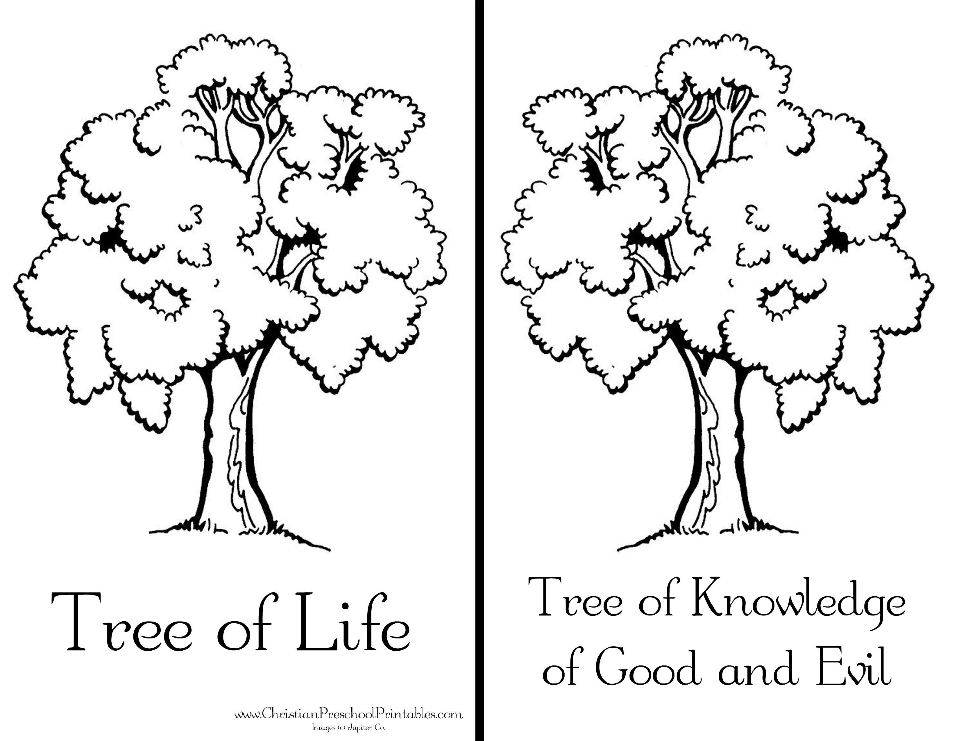Garden Of Eden Craft Fall Coloring Pages Sunday School Coloring Pages Coloring Pages
