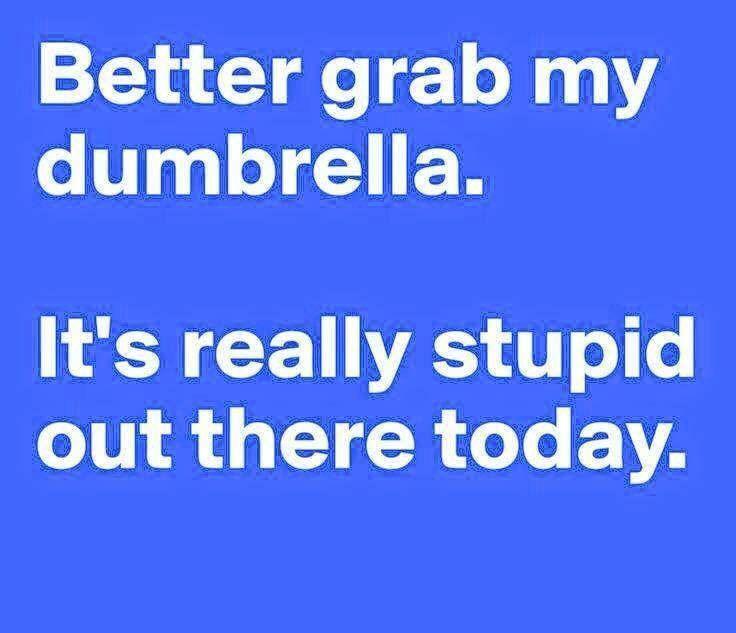 Tumblr M5u2jnvdfe1qamki1o1 1280 Jpg 612 612 Funny Quotes Words Stupid People