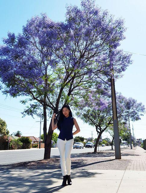 Jacaranda Trees in Adelaide  Navy blue top, white jeans, black booties. Purple jacaranda trees.