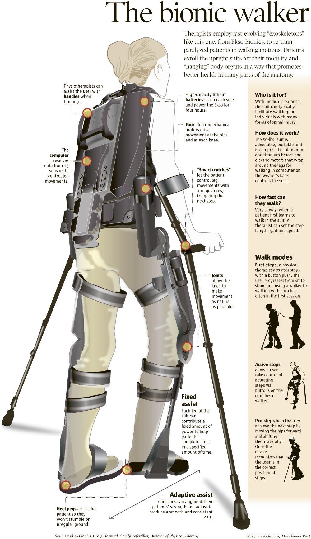 The bionic walker