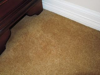 Miracle Carpet Stain Removal Technique Professional Carpet Cleaning Natural Carpet Cleaning Carpet Cleaning Solution