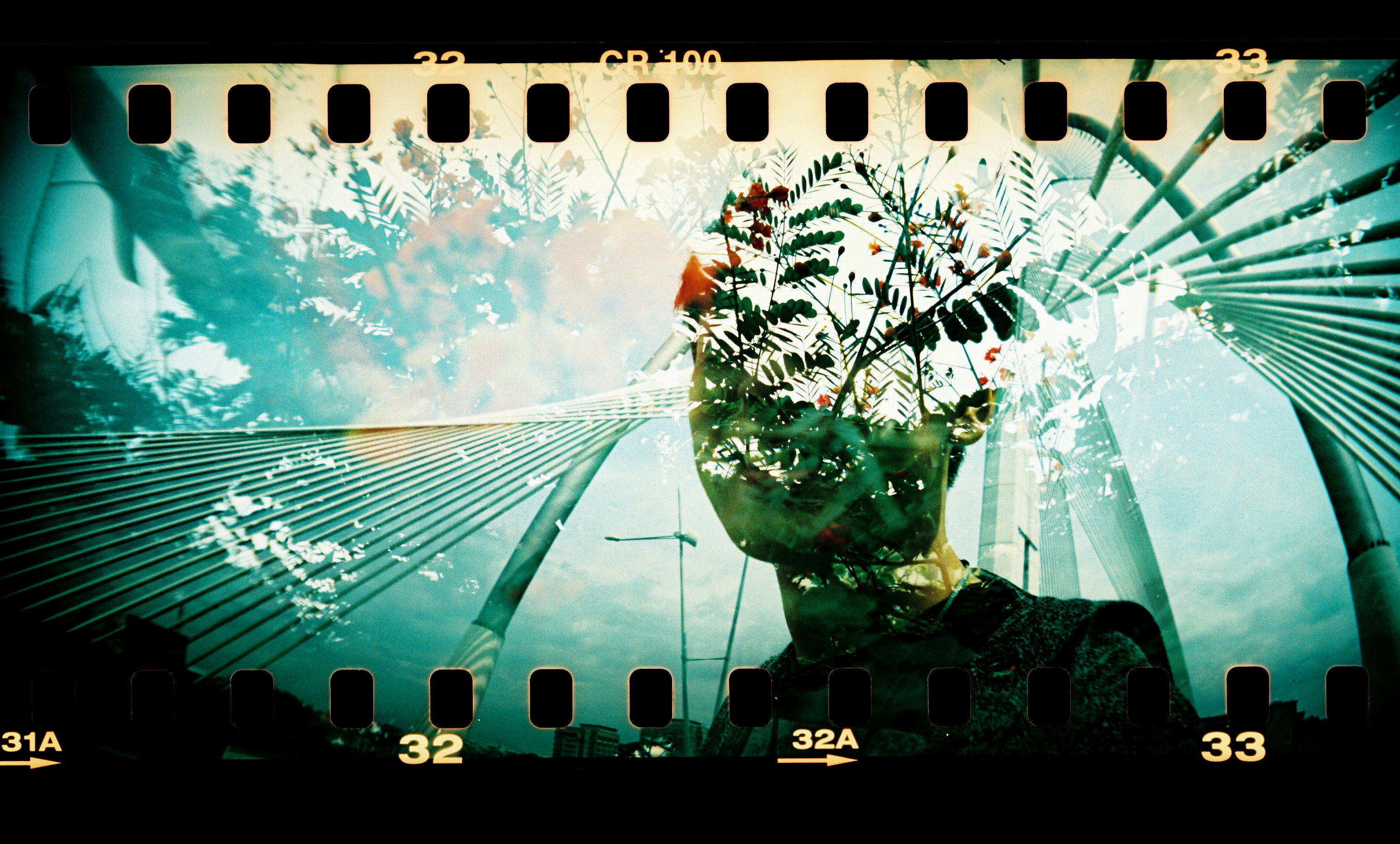 Sprocket Rocket Camera : Sprocket rocket camera lomogaphy lomography film