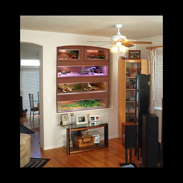 reptile stacking cages - from showcasecages.com A nice ...