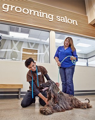 7 Questions To Prepare For Your Pet S First Visit To A Grooming Salon Pets First Pet Grooming Grooming Salon