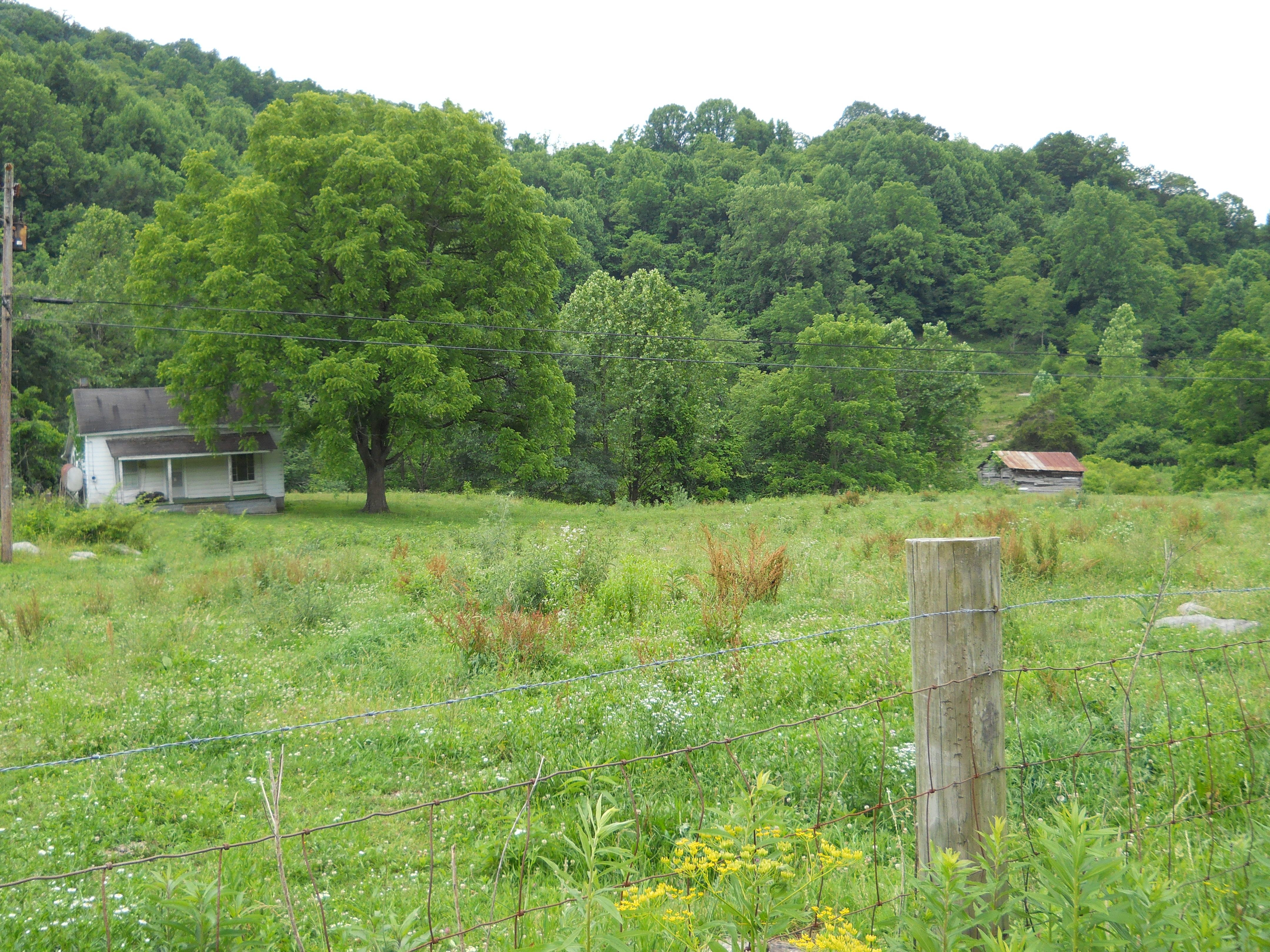 Our Farm in the Loop...where my momma was raised...can't wait to restore it:)