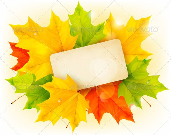 Autumn background with color leaves and card Leaves, Autumn and - editable leaf template