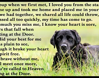 Black Labrador Pet Dog Photo Memorial Gift Mounted Poem Etsy Black Labrador Retriever Labrador Retriever Dog Black Labrador