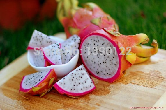 100/bag dragon fruit seeds DIY home graden, pitaya seeds fruit seeds for home garden spring plant fruit-tree-seedlings