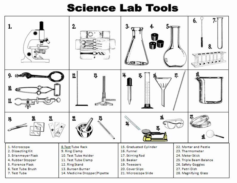 Scientific Method Worksheet High School Inspirational Exploring The Scientific Method Worksheet Chessmuseum Science Lab Tools Science Tools 4th Grade Science Science lab equipment worksheets