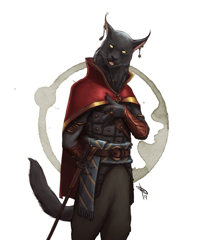 Image result for female tabaxi | Game Stuff | Dungeons