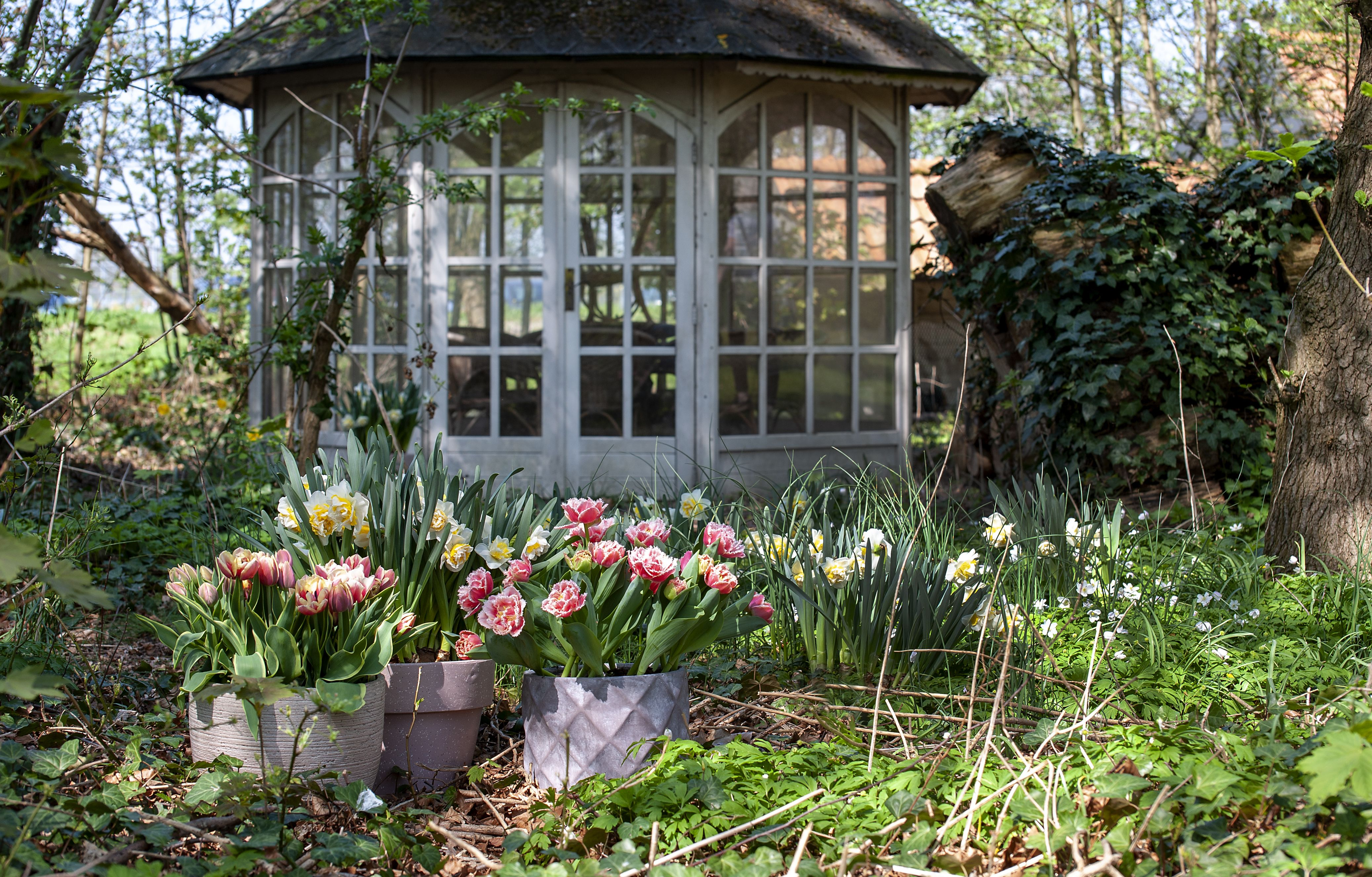 Garten Im Marz Das Ist Jetzt Zu Tun Garten Hauschen