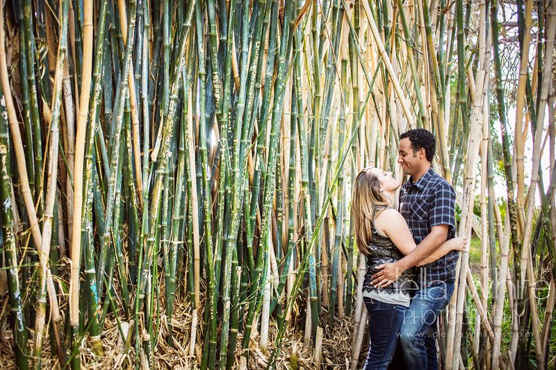 Enagement Session At Ucr Botanic Gardens In The Bamboo C Della White Photogr Riverside Weddings Orange County Wedding Photographer Wedding Southern California