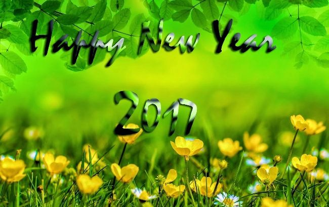 Happy New Year Wallpaper Hd Wishes And Quotes Wallpapers For Mobile Desktop
