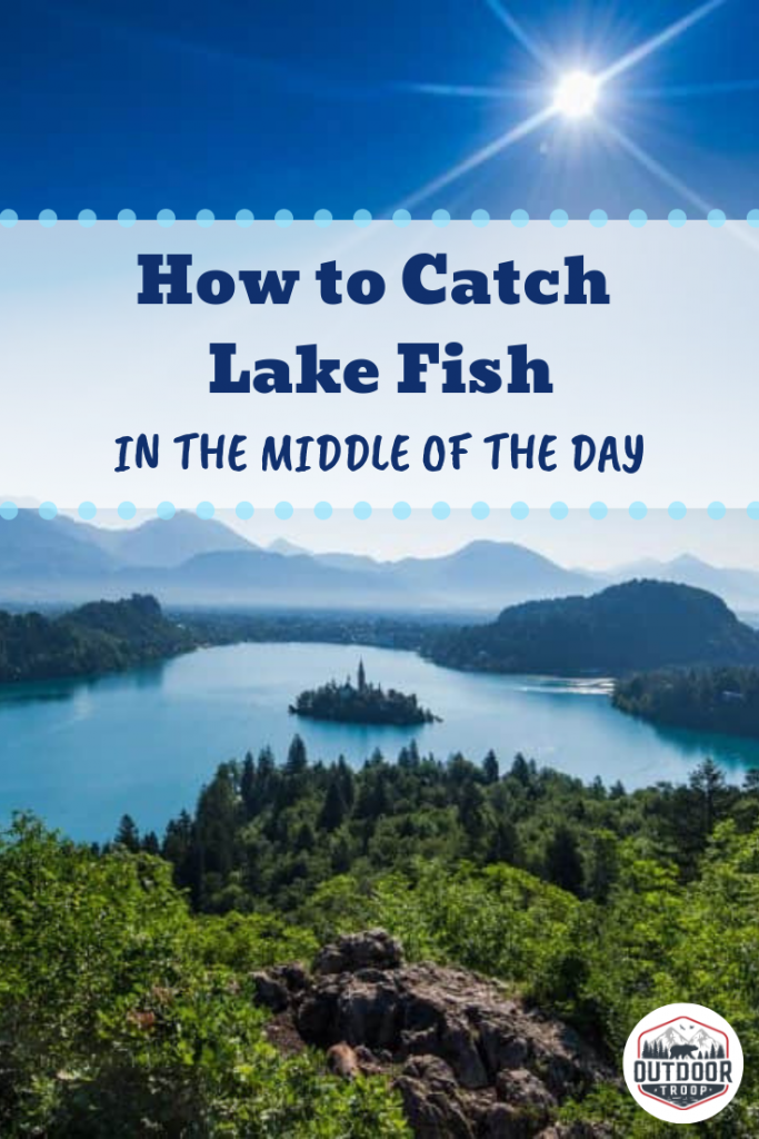 Like fishing in the lake near your town? In this article, we provide tips and tricks on how to catc