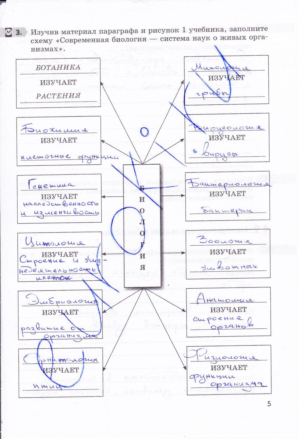 Решебник по русскому языку 6 класс львова и львов 1 часть пораграф