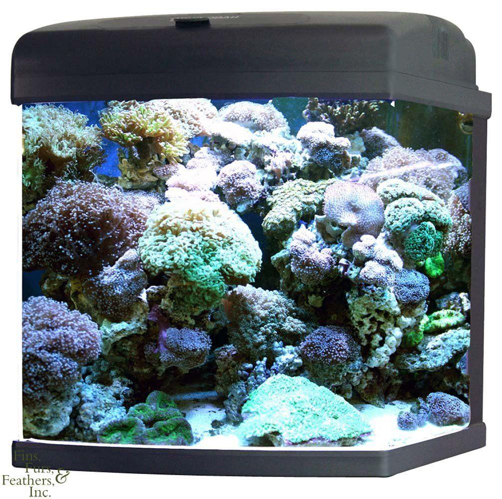 Is a 15 watt light bulb big enough for a 14 gallon aquariam?