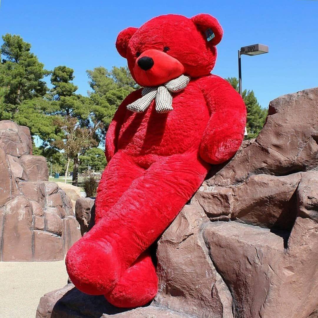 صور دباديب كيوت في غاية الروعة بفبوف Baby Developmental Toys Baby Beanie Baby Bear