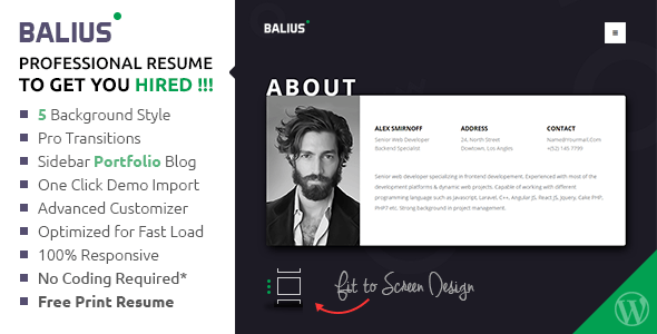 Download Balius  Resume And Vcard Wordpress Theme Nulled Latest