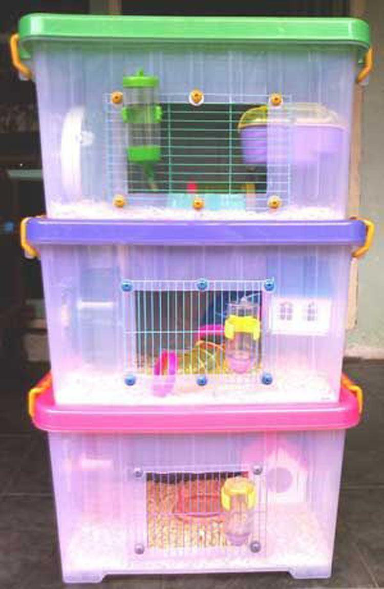 8 Ideas Fant Sticas Que Utilizan Cajas De Almacenaje De Pl Stico  ~ Cajas Plastico Almacenaje Baratas