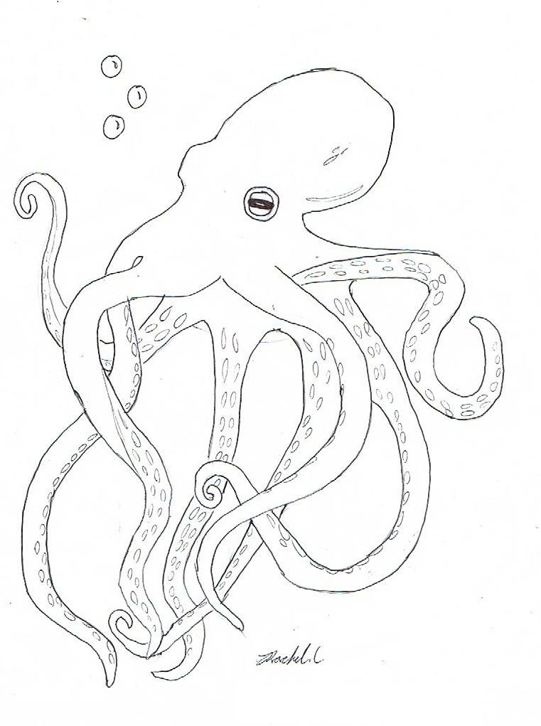 Free Printable Octopus Coloring Pages For Kids | Nautical ...