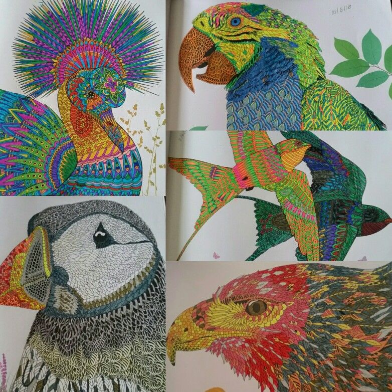 The Aviary Colouring Book