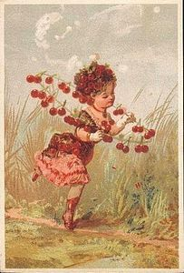 fleurs animees:gravures et chromos - Un petit jardin du Nord ...