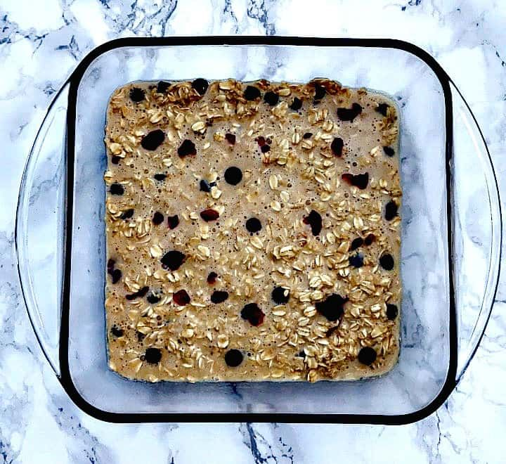 oatmeal chocolate cranberry protein bars