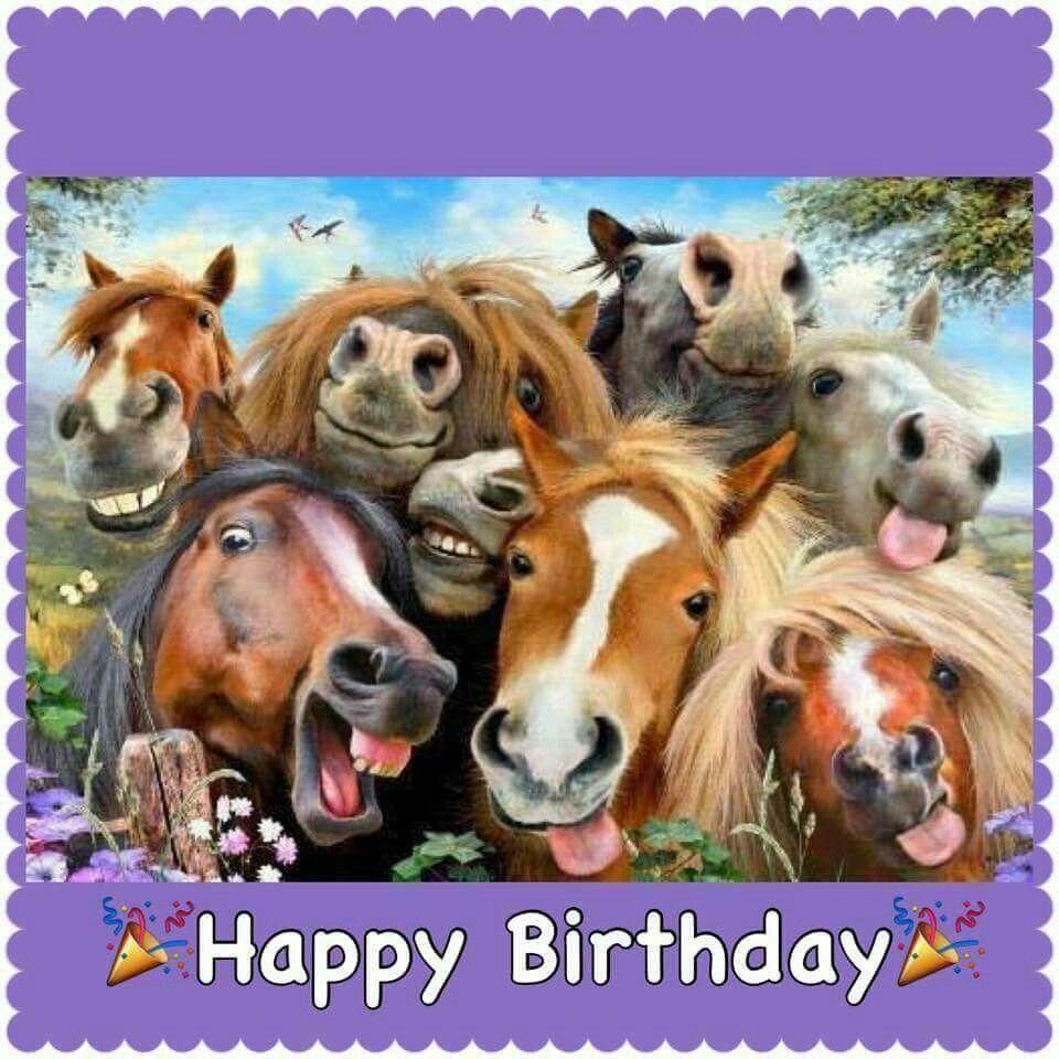 Postkarte Tierpostkarte Geburtstagskarte Pferd Lass Dich