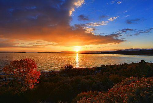 Un beau lever de soleil d'automne au lac Mono juste à l'extérieur de Lee Vining, Californie.