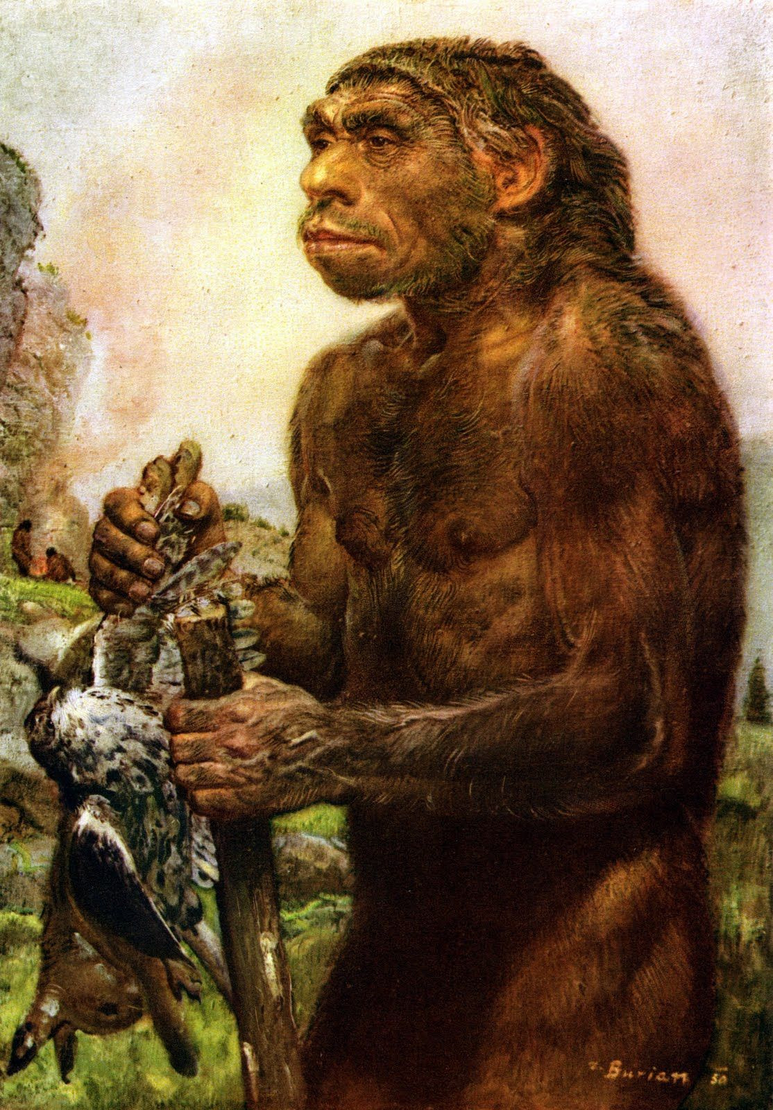 A Neanderthal By Zdenek Burian