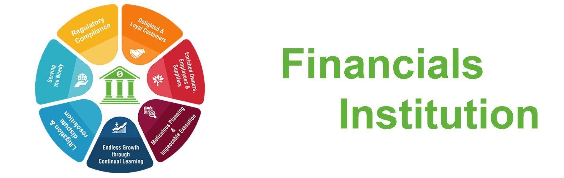 Financial institution partnerships programs financial