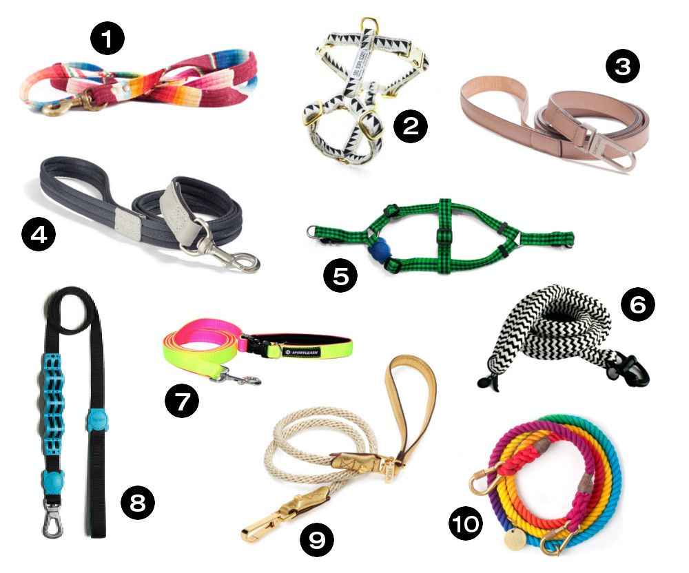 Dog Milk Holiday Gift Guide 20 Awesome Dog Collars Leashes And