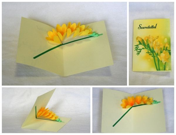Flower pop up cards by stephani imola via behance popop and flower pop up cards by stephani imola via behance mightylinksfo